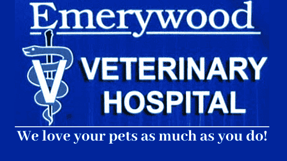 Emerywood Veterinary Hospital PA. We love your pets as much as you do!